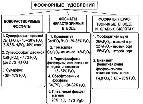 разновидности фосфорных удобрений