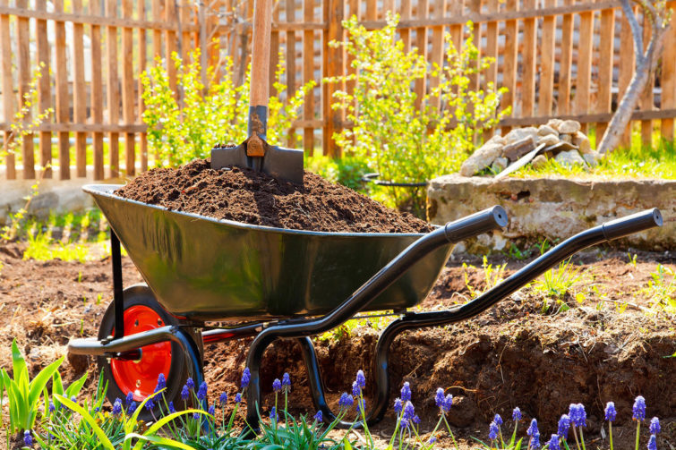 садовая тележка с землей
